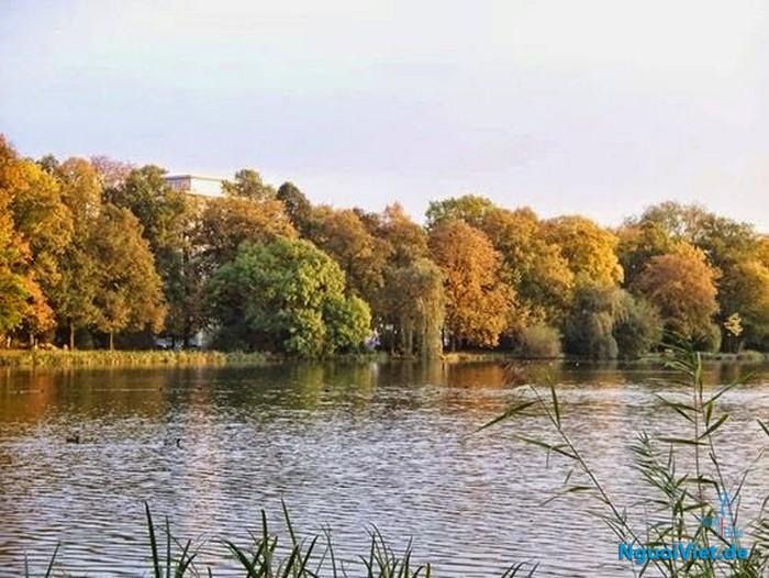 Vui ngọn bút -  thỏa hồn say/ Chemnitz lắng đọng vẹn đầy tình thơ. (Ảnh minh họa: một chiếc hồ ở Chemnitz)