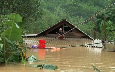 Ngư dân bạc trắng mái đầu/  Nay thêm lũ lụt vùi sâu đoạ đày! Hình minh họa: Internet