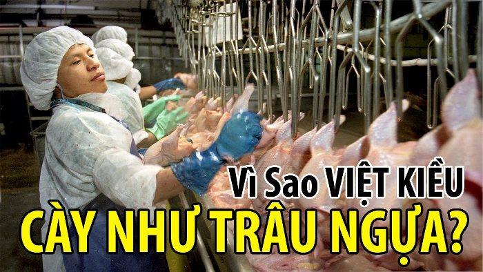 Góc khuất Việt kiều