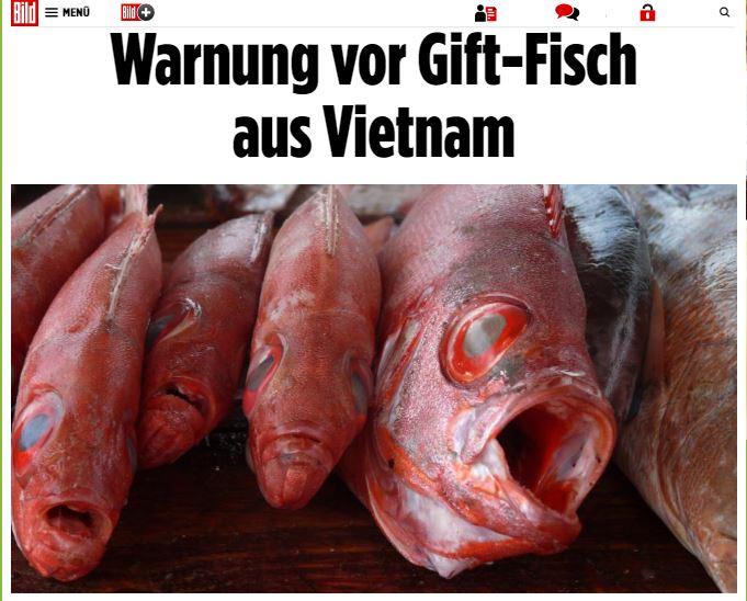 Ảnh chụp màn hình báo Hình ảnh (Bild) của Đức do do NguoiViet.de thực hiện